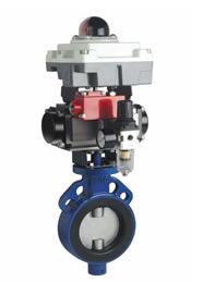 Pneucon Automation  Rubber Lined Butterfly Valve